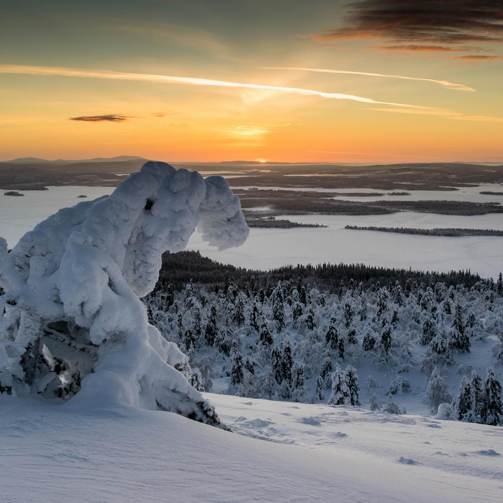 landscape from the fell with snowy forest and orange sky in lapland